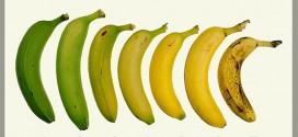 Μπανάνα και διαβήτης : Γνωρίζετε σε ποιο στάδιο ωρίμανσης είναι προτιμότερο να φάτε μια μπανάνα;