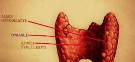 Θυρεοειδής και συμπτώματα