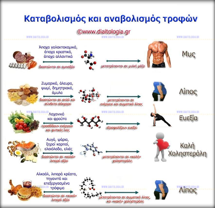 Συνδυασμοί τροφίμων στην δίαιτα