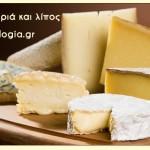 Ξένα τυριά και λίπος